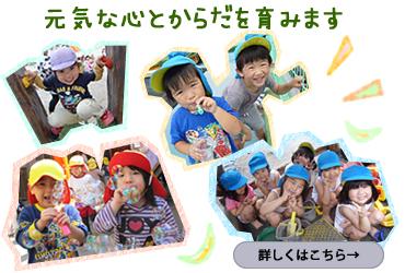 松青保育絵は2歳から元気な心とからだを育みます